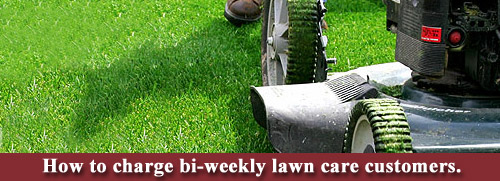 Weekly lawn care customer