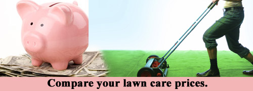 compare your lawn care prices