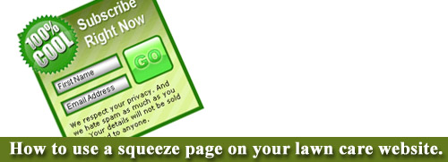 lawn care website squeeze page